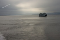 Morning Crossing to Vancouver Island