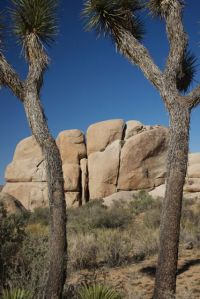Big Rocks at Joshua Tree