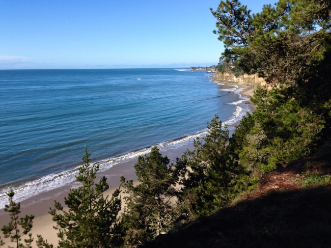 Looking down the bluffs at the Pacific Ocean from New Brighton Campground
