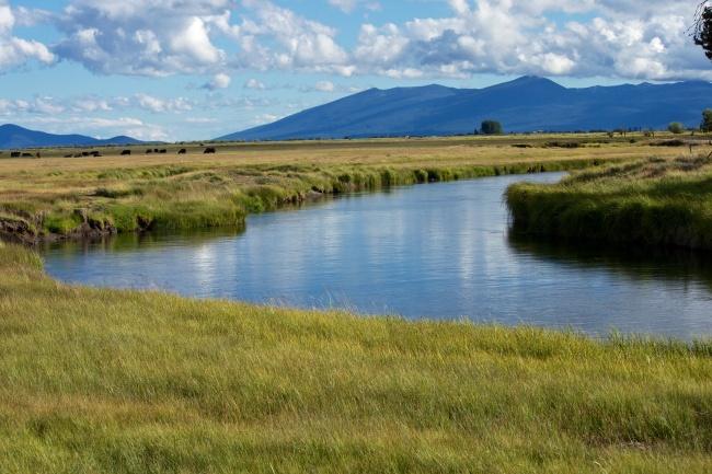 Klamath Marsh