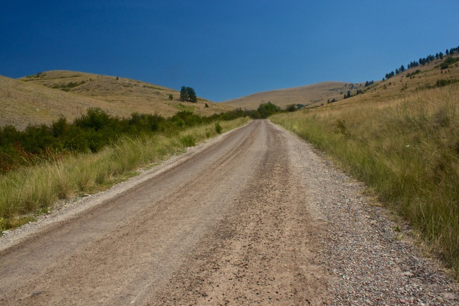 Dirt road to drive through range.