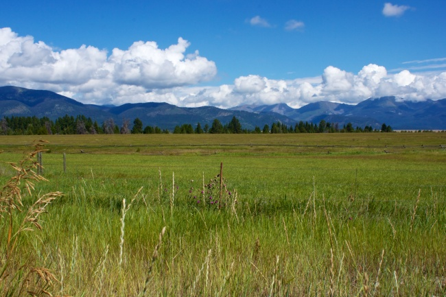 Green meadows, miles of vast uncluttered land, and huge mountains in the background.