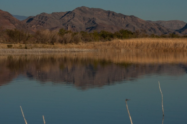 20150328-Parhangat to wild horses to corn springs-211