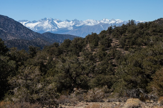 20150329-Parhangat to wild horses to corn springs-2